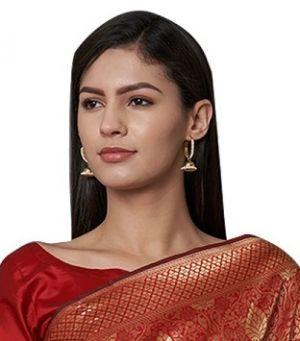 Jarna Naylon Silk Festive Wear Saree